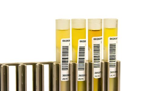 Drug Testing & Screening
